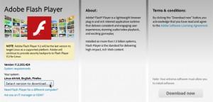 FlashPlayer-2